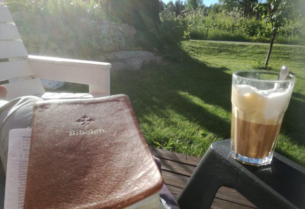 bibel i sol2